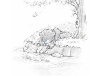 bruin-bear-frend